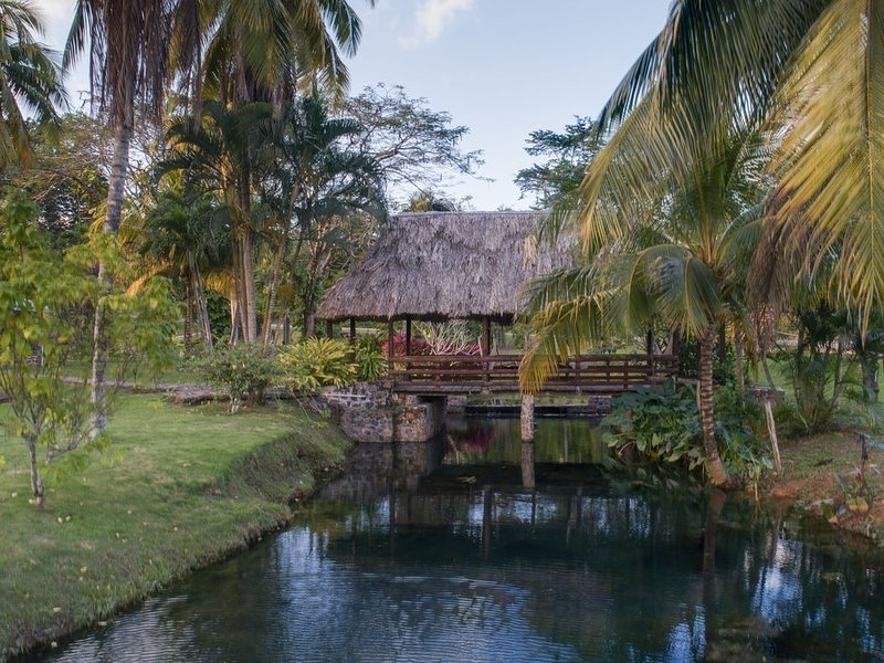 Oasis in rainforest/citrus orchard, minutes to wildlife, ATV, WIFI,1hr to beach, holiday rental in Cayo