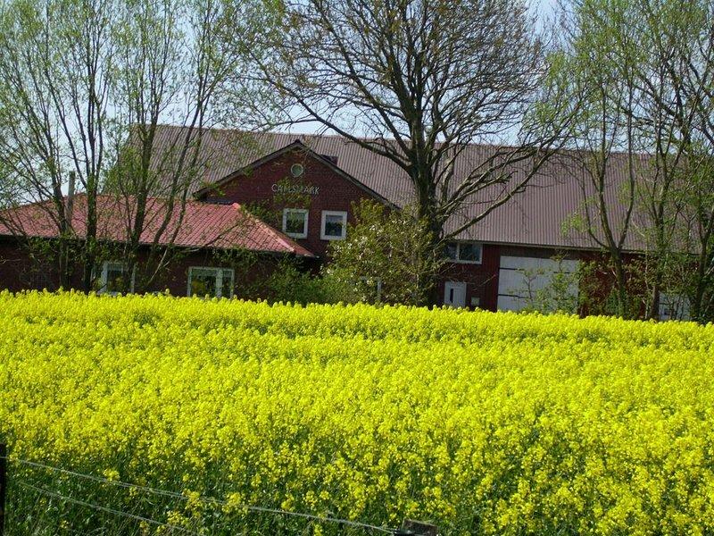 Auszeit in Nordfriesland, ankommen und wohlfühlen, holiday rental in Rodenas