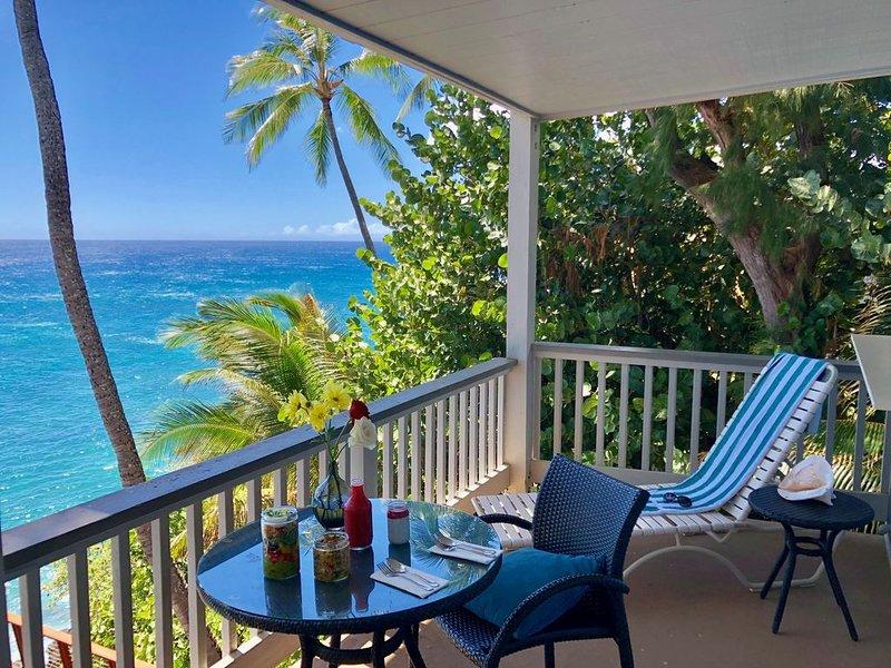 Beautiful View from Poipu Palms 204