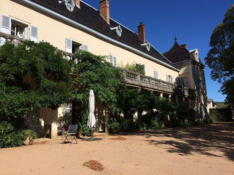 Château- Appartement 8 personnes au coeur du Beaujolais, holiday rental in Quincie-en-Beaujolais