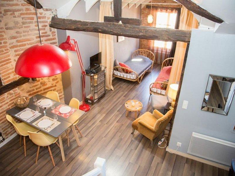 Le Gite du Vieil Albi, vacation rental in Lescure-d'Albigeois