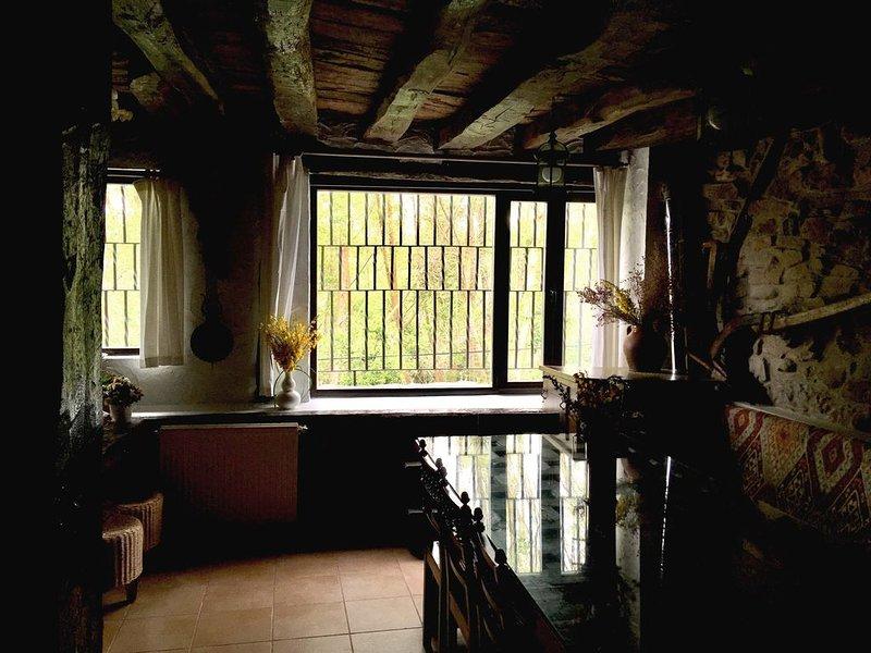 Villapajar, casa rural junto al río en la Sierra de la Demanda, a 26km de Burgos, holiday rental in Valdazo