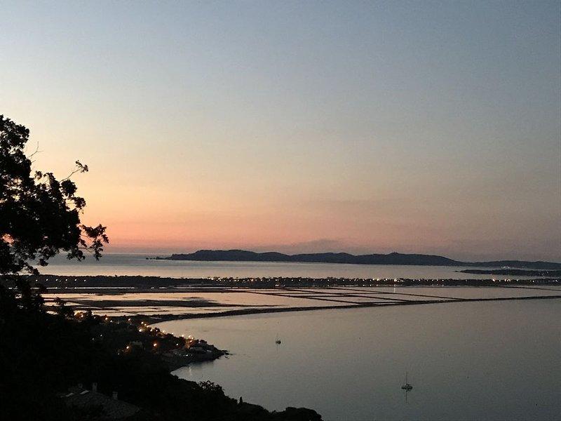 Vue mer et îles exceptionnelle, villa climatisée, holiday rental in Carqueiranne