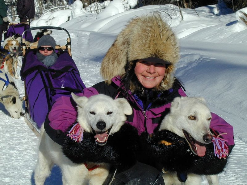 Dogsled tours