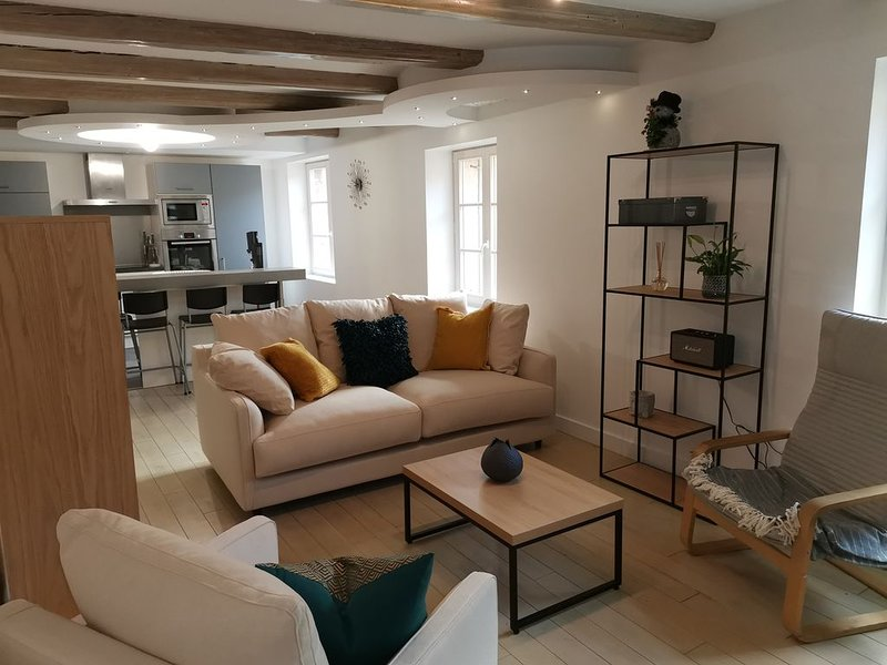 Aux Portes de la Craffe, holiday rental in Nancy