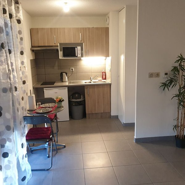 Paisible studio calme, holiday rental in Beauzelle