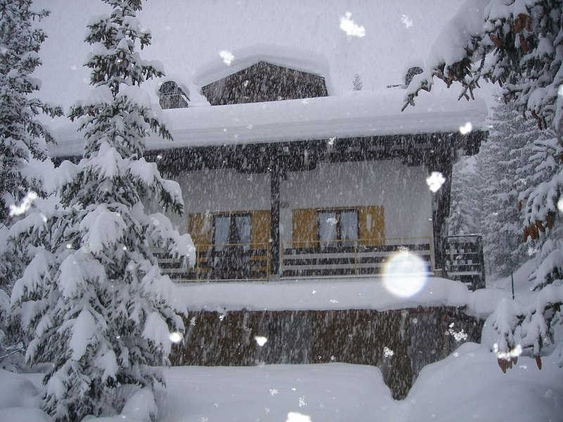 Casa dell'Aqua - 3 Bedroom Apartment 'Tita' at Passo del Tonale, vacation rental in Vione