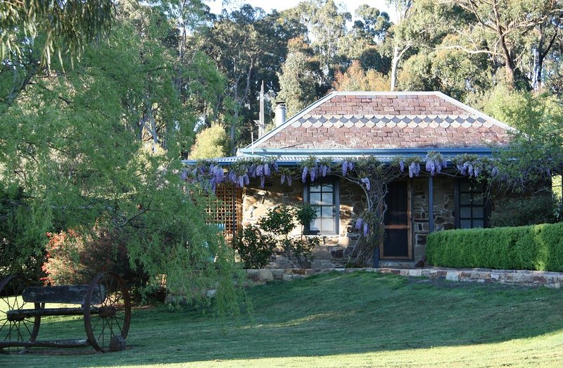 Dog-friendly studio close to Daylesford - The Stoney at Hollow Log Estate, holiday rental in Daylesford