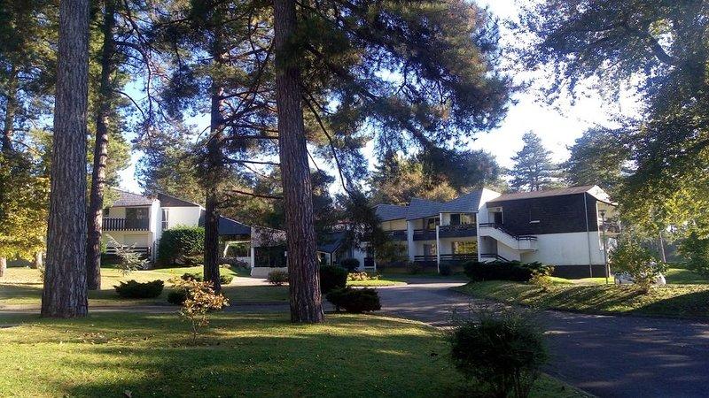 Au coeur du golf d Hardelot , agréable appartement dans un parc boisé, holiday rental in Neufchatel-Hardelot