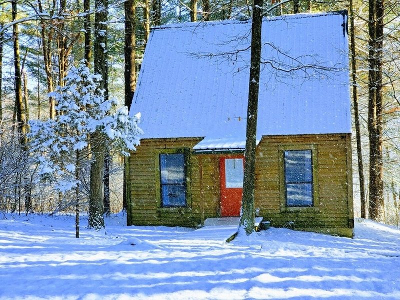 Evergreen Hideaway is a cabin nestled under tall pines., location de vacances à Haydenville