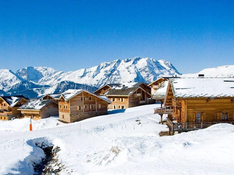 Joli Chalet Privé 15 personnes avec cheminée + Sauna | Accès direct aux pistes !, holiday rental in L'Alpe-d'Huez
