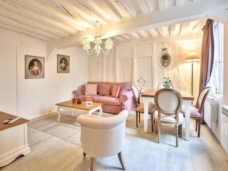 PETIT ANGE appartement de charme cœur de Rouen, holiday rental in Le Grand-Quevilly