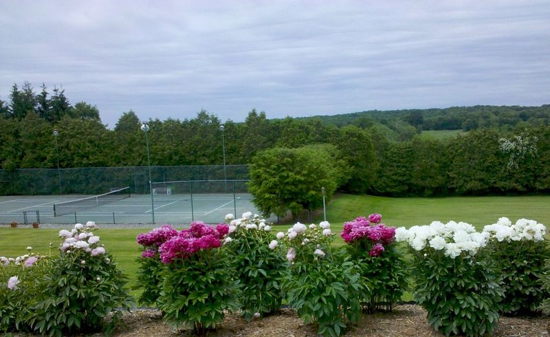 Millbrook Country Dream! Tennis/Swim/Play – semesterbostad i Wingdale