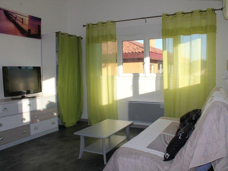 Appartement T2 45 m2, bord de mer à l'étage de notre maison, terrasse piscine, holiday rental in Sainte-Marie-Plage