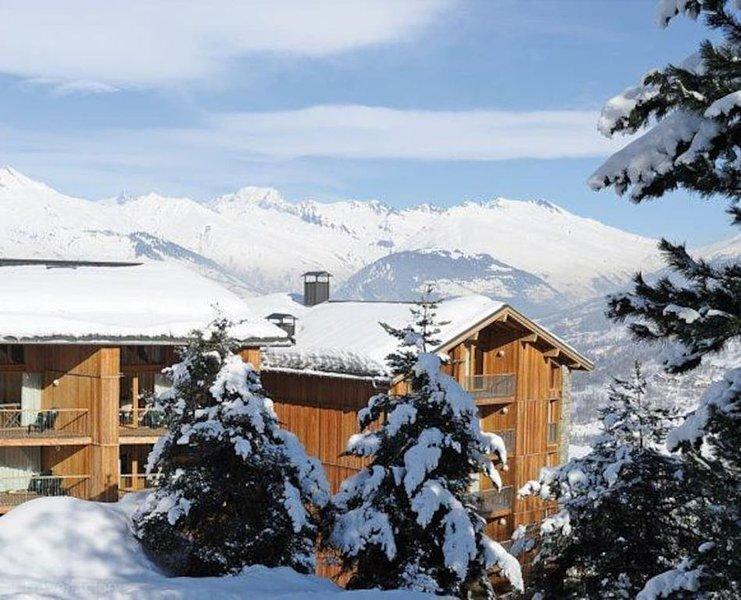 SKI AUX PIEDS DUPLEX 4 CHAMBRES 90 M2  AU COEUR DE PARADISKI VUE MONT BLANC, holiday rental in Montchavin