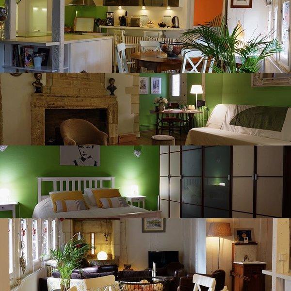 Chez Patrick et Marie Francoise la maison rouge, holiday rental in Chinon