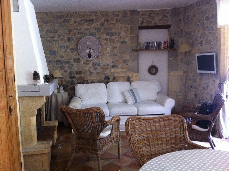 Maison de caractère au pied du château. Terrasse ombragée., holiday rental in Saint Pierre de Mezoargues