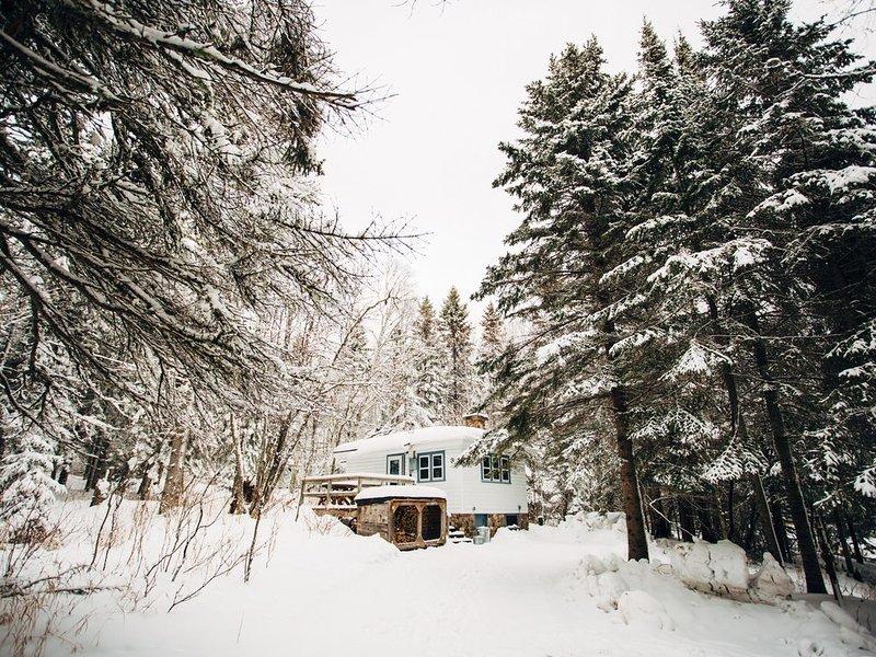 Little Loon Studio Cottage, holiday rental in Lutsen
