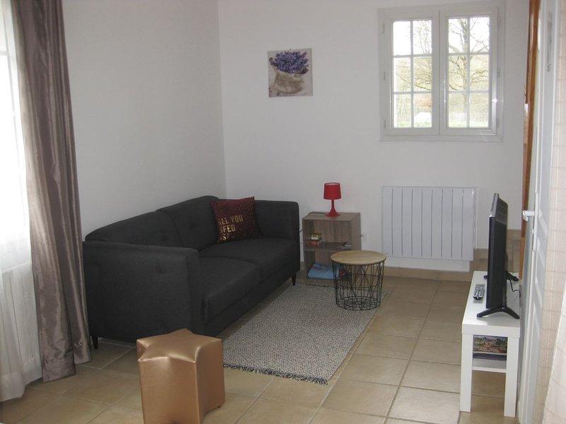 Maison de Charme près d'Amboise, holiday rental in Vallieres-les-Grandes