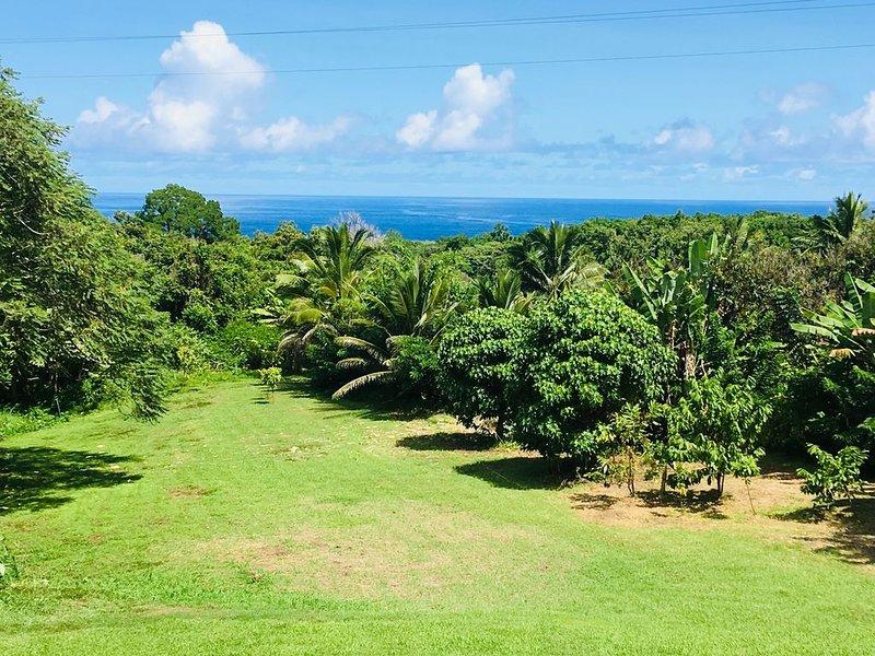 Hana Nautilus 'New Listing'Ocean View Custom Home in Hana Permit#SUP2 2019/0006, holiday rental in Hana