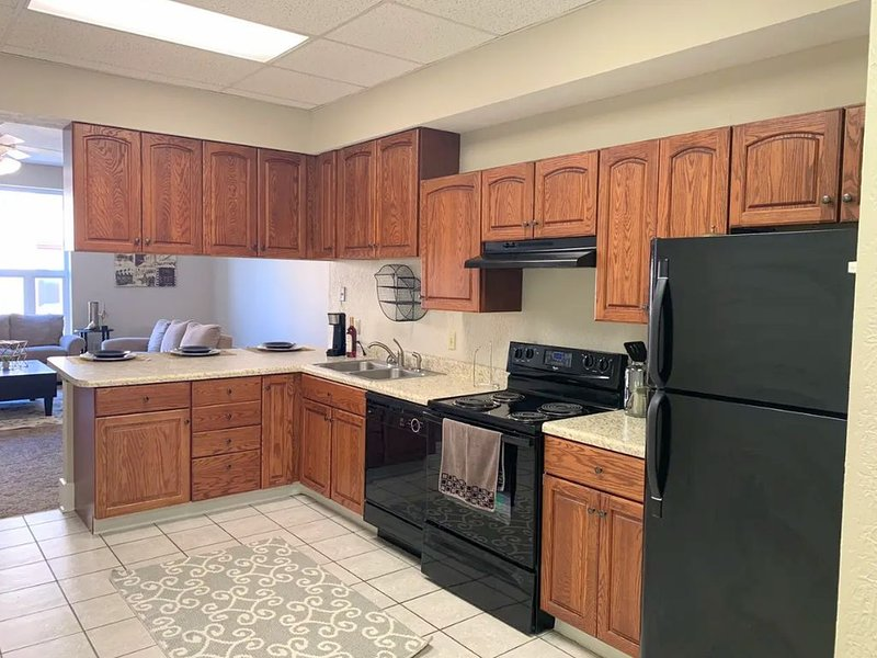 Downtown Hub Spot Condo!, vacation rental in Young America