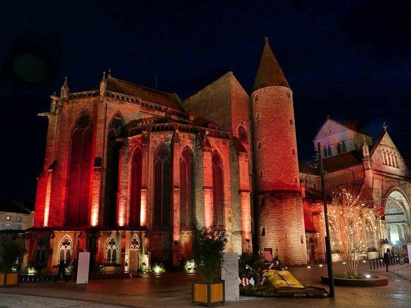 Hyper centre, T3 traversant, vue exceptionnelle sur le château et la Moselle., holiday rental in Epinal