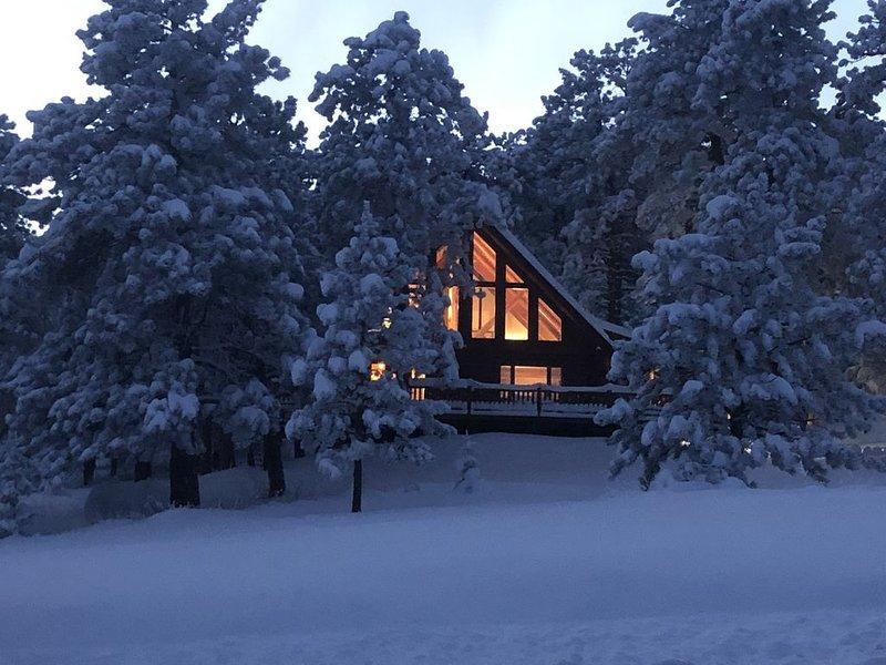 Ponderosa Pine Mtn Escape~5*Spotless & Isolated, location de vacances à Rollinsville