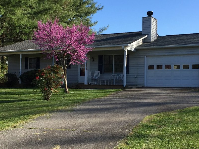 Tranquil Mountain Cottage (Wheelchair Accessible), holiday rental in Candler