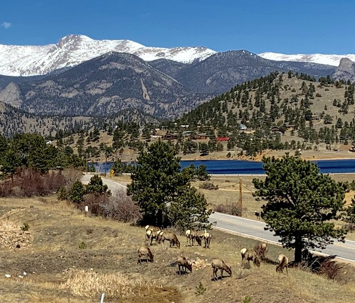 Peaceful Mountain Views and Mary's Lake views! Minutes to Estes Park and RMNP!, holiday rental in Estes Park