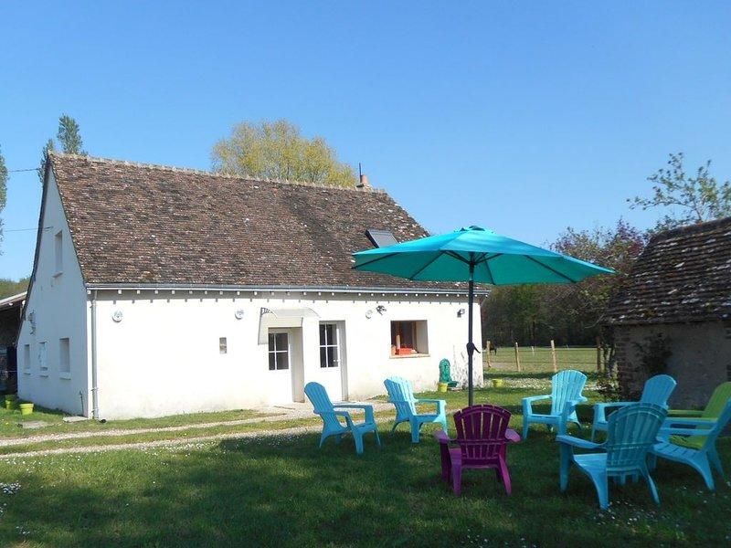MAISON DE CAMPAGNE 3* 4 CH JACUZZI AU COEUR DES CHATEAUX, holiday rental in Saint-Nicolas-des-Motets