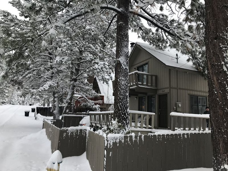 ROMANTIC House in the woods at trailhead.  Fireplace and large fenced yard., vacation rental in Big Bear City