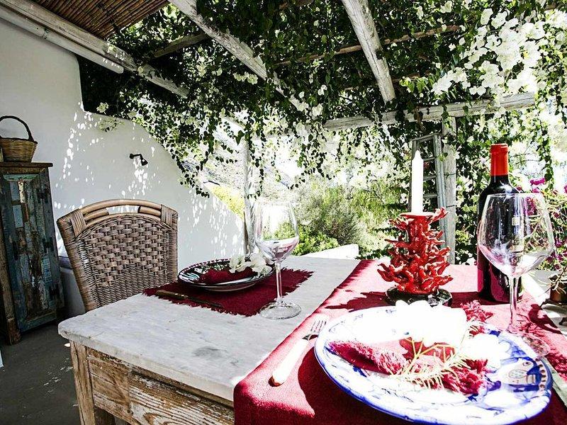 A' Casa ì Mimmo  - ideale per coppie, immersa tra i vigneti di Malvasia..., casa vacanza a Filicudi