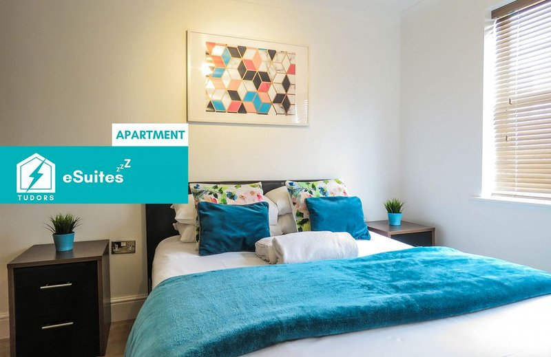Tudors eSuites one bedroom apartment near Canal Side, holiday rental in Digbeth