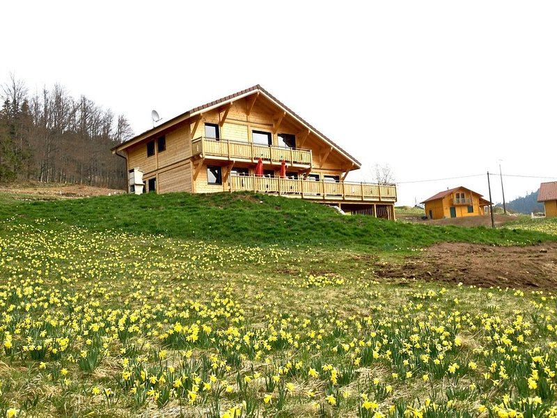 Bain de nature : grands espaces int, jacuzzi, sauna, billard, WIFI, plein sud, vacation rental in Xonrupt-Longemer