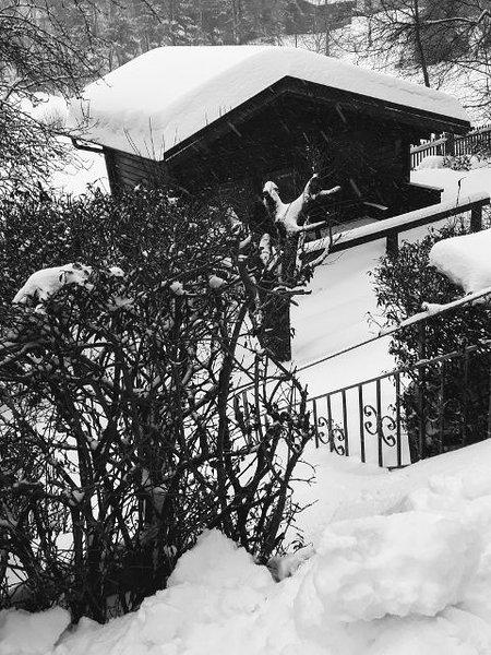 3 Sterne Ferienwohnungen Wachter (Bischofsgrün)-Hubertia Gartenhaus