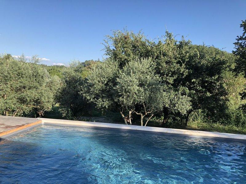 Très belle Maison comtemporaine, piscine, terrasse et grand jardin, location de vacances à Niozelles