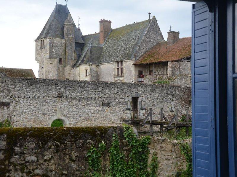Entre Cheverny et Beauval, séjournez dans une dépendance du château de Chémery, vacation rental in Chatillon-sur-Cher