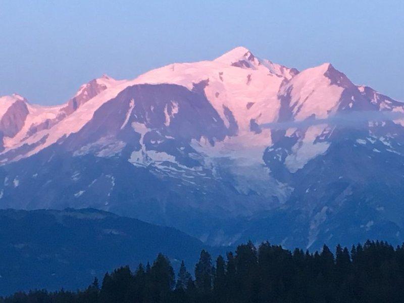 Face au Mont Blanc, plein sud, charmant, location de vacances à Cordon