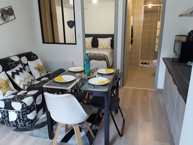 Charmant T2 cosy / 4 personnes / 5 min du Puy-en-Velay, holiday rental in Saint-Hostien