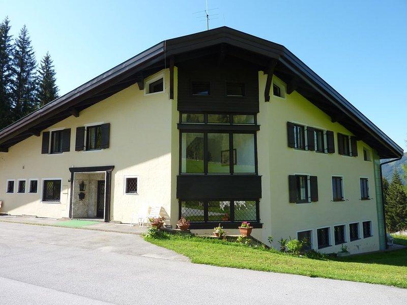 Ferienwohnung  mit Terrasse  in der herrlichen Bergwelt des Hochkönigs !, holiday rental in Muehlbach im Pinzgau