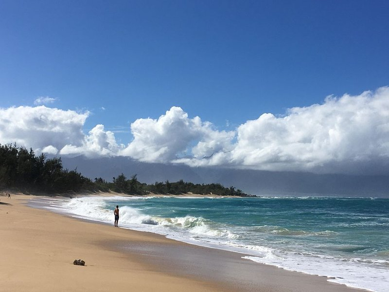 Fab Beach Condo-Low $, Slp.4, Grnd Level by Pool -- Lots of beach xtras!!, vacation rental in Haleakala National Park