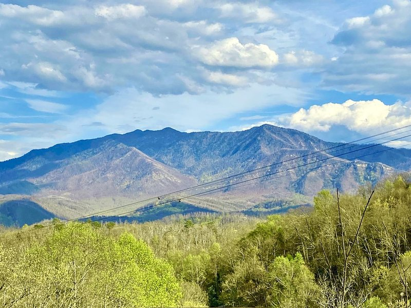 Gorgeous Smoky Mountain Views! Close to Town! Wifi, Fireplace, Kitchen, alquiler de vacaciones en Gatlinburg
