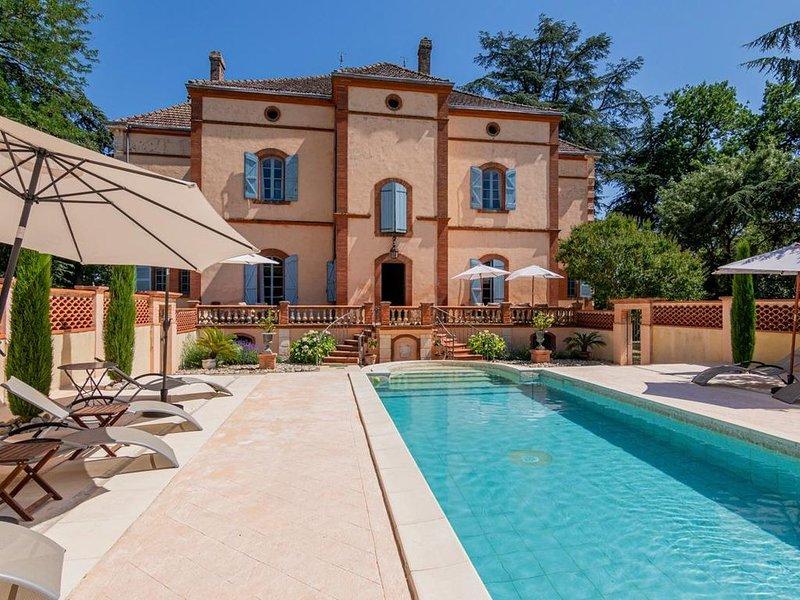 Chateau Gaillac at Occitanie, vacation rental in Gaillac