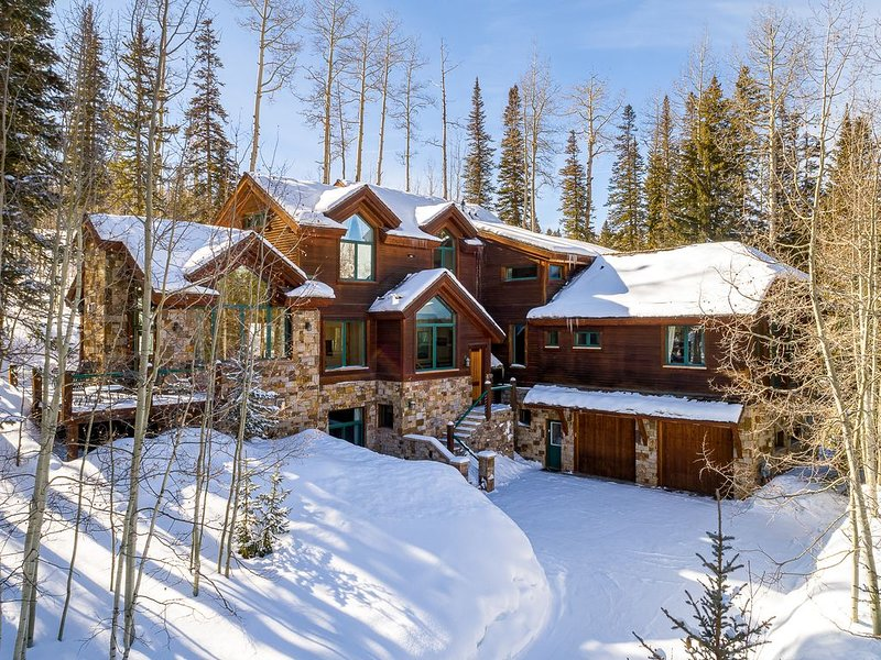 Gorgeous stand alone home, ski in/out, private hot tub, close to Mountain Villa, location de vacances à Mountain Village
