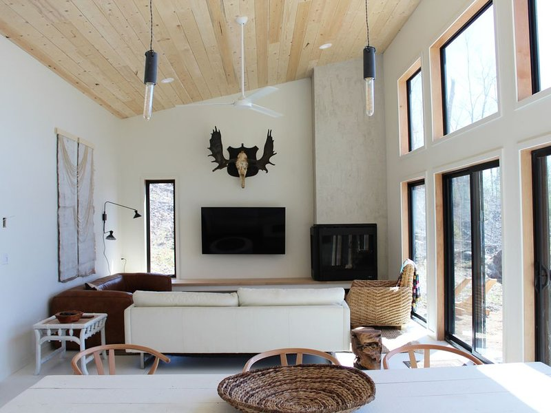 Secluded Nordic Cabin, vacation rental in Luck