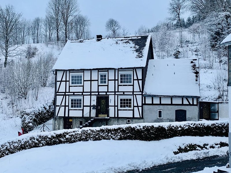 Large holidayhome near Winterberg with garden, terrace and garage, holiday rental in Elkeringhausen