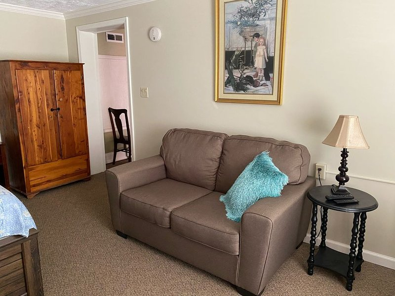 Downtown Historic Abingdon, VA, holiday rental in Glade Spring