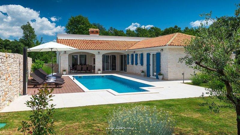 Delightful villa with pool near Rabac, alquiler de vacaciones en Ruzici