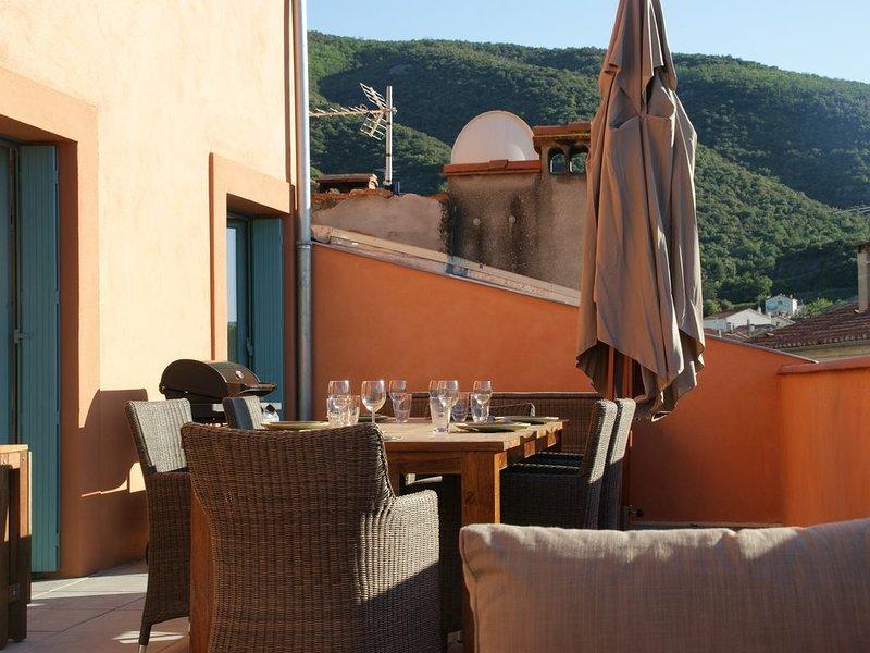 Pour 2 à 6 pers,duplex centre  vieux Céret, tres grande terrasse vue montagne, holiday rental in Les Hauts de Ceret