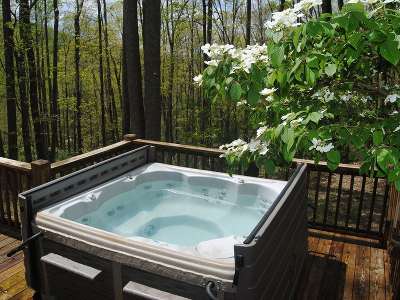 Amazing Value!    Hot TUB! Mountain View!!, holiday rental in Blairsville